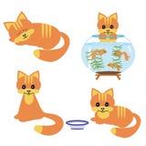 Cuatro gatos en el fondo blanco Imágenes de archivo libres de regalías