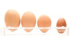 Cuatro huevos Imagen de archivo libre de regalías