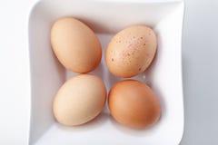 Cuatro huevos Foto de archivo libre de regalías