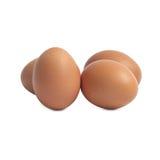 Cuatro huevos aislados foto de archivo