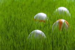Cuatro huevos de Pascua en hierba verde Imagen de archivo libre de regalías