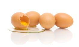 Cuatro huevos del pollo en el fondo blanco foto de archivo