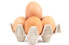 Cuatro huevos en célula Imagen de archivo