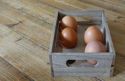 Cuatro huevos marrones en una caja de madera con el espacio para seis huevos, en natu Foto de archivo libre de regalías