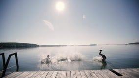 Cuatro individuos corren abajo del embarcadero y del salto en el lago almacen de video