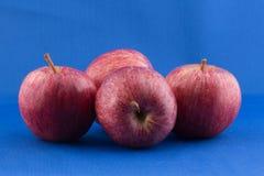 Cuatro manzanas foto de archivo libre de regalías