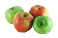 Cuatro manzanas coloridas Fotos de archivo libres de regalías