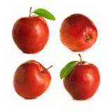 Cuatro manzanas rojas Foto de archivo