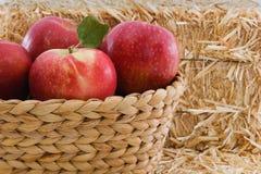 Cuatro manzanas rojas en una cesta con la paja rústica Foto de archivo libre de regalías