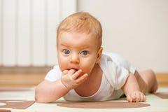 Cuatro meses del bebé Imagen de archivo libre de regalías