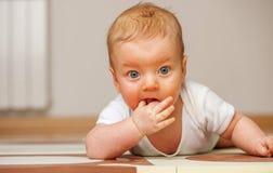 Cuatro meses del bebé Imágenes de archivo libres de regalías