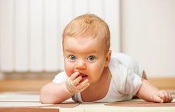 Cuatro meses del bebé Foto de archivo