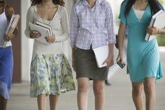 Cuatro muchachas adolescentes de la High School secundaria. Fotografía de archivo