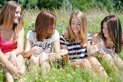Cuatro muchachas adolescentes felices que comparten secretos Fotografía de archivo