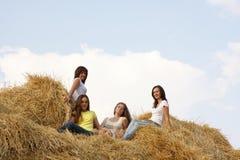 Cuatro muchachas en el heno Imágenes de archivo libres de regalías