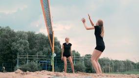 Cuatro muchachas que juegan a voleibol en la playa Voleibol de playa, red, mujeres en bikinis Ejemplo plano de la historieta comi almacen de video