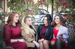 Cuatro mujeres se divierten que hablan cuando se encuentran imagen de archivo libre de regalías