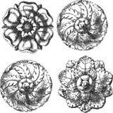 Cuatro ornamentos grabados del círculo Fotografía de archivo