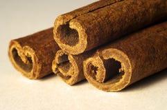 Cuatro palillos de cinamomo Imagen de archivo libre de regalías