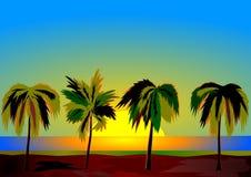 Cuatro palmas en el amanecer Foto de archivo libre de regalías