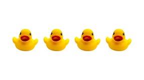 Cuatro patos de goma en un fondo blanco Imagen de archivo libre de regalías