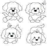 Cuatro perritos Fotografía de archivo libre de regalías