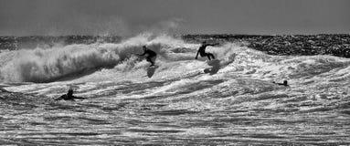 Cuatro personas que practica surf Fotografía de archivo libre de regalías