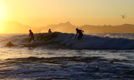 Cuatro personas que practica surf en una onda Fotografía de archivo libre de regalías