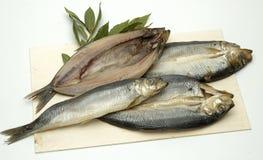 Cuatro pescados Foto de archivo