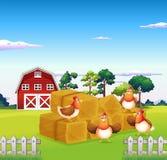 Cuatro pollos en el heno con un granero en la parte posterior stock de ilustración