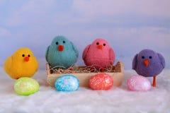 Cuatro polluelos del bebé con los huevos coloridos en frente Foto de archivo