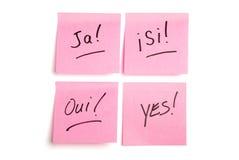 Cuatro post-it rosados en cuatro lenguajes Foto de archivo libre de regalías