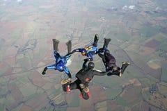 Cuatro skydivers en caída libre Foto de archivo