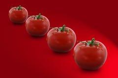 Cuatro tomates Imagen de archivo libre de regalías