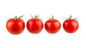 Cuatro tomates Foto de archivo libre de regalías