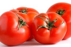 Cuatro tomates frescos Fotografía de archivo libre de regalías