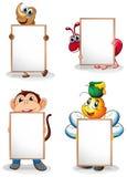 Cuatro whiteboards delante de los cuatro animales Fotos de archivo libres de regalías