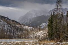 Cub湖-洛矶山国家公园 免版税库存照片
