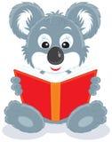 cub βιβλίων ανάγνωση koala ελεύθερη απεικόνιση δικαιώματος