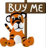cub λυπημένο παιχνίδι τιγρών Στοκ φωτογραφία με δικαίωμα ελεύθερης χρήσης