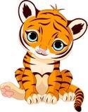 cub χαριτωμένη τίγρη Στοκ Φωτογραφία