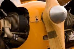 Cub amarillo Foto de archivo