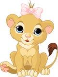 Cub della ragazza del leone Fotografia Stock