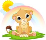 Cub di leone felice Fotografia Stock Libera da Diritti