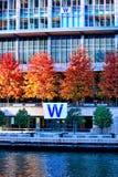 CUB gewinnen! Chicago River ist gefärbtes Blau während Feier 2016 des CUBs, welches die Weltmeisterschaft O gewinnt lizenzfreies stockfoto