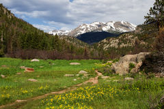 Cub Lake Trail in Rocky Mountain National Park. The cub lake trail starts in Morraine Park and winds through the meadows and hills of Rocky Mountain National stock photos