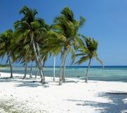 Cuba imagens de stock royalty free