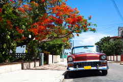 Cuba american classic cars pareked in havana Stock Photography