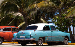 Cuba american classic cars under palms Royalty Free Stock Photo