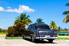 Cuba american Oldtimer parking under palms Stock Photo